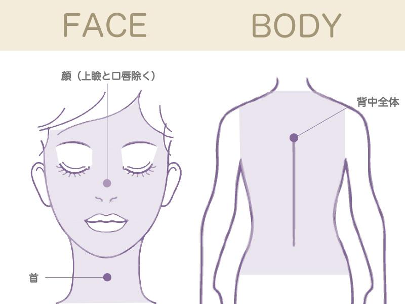 イオン導入の施術部位、目元を除くお顔全体と首及び、背中